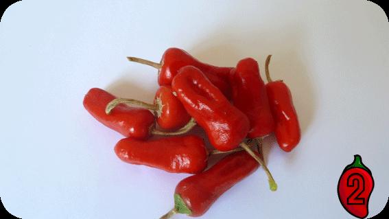 apache nasiona na parapet balkon chili papryka ostre