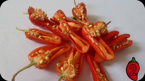 apache nasiona na parapet balkon chili ostre papryki