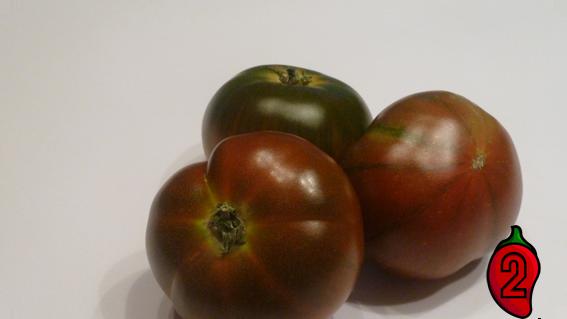 pomidor raf cherry koktajlowy do doniczki na balkon nasiona pomidor pergole guacamole