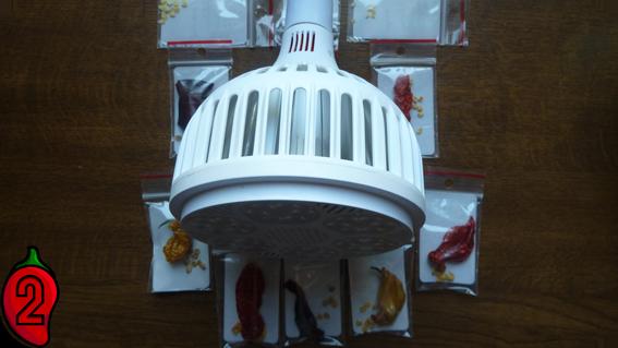 growled 120w lucy apache habanero kiełkownica kiełkowanie nasion papryka carolina reaper nasiona hot chili na parapet balkon ostre papryki chilli sosy oświetlenie growbox 2