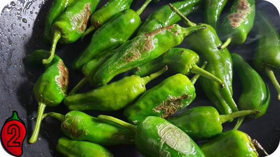 Pieczona papryka Pimientos de Padrón z oliwą