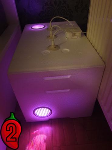 growbox-zestaw-z-lampą-led