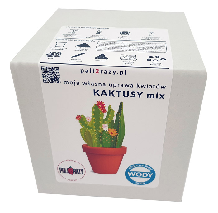 moja domowa uprawa zestaw do uprawy kwiatów Kaktusy Mix odmian
