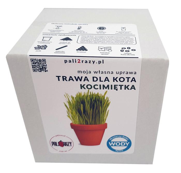 moja domowa uprawa zestaw do uprawy kwiatów Trawa dla Kota kocimiętka